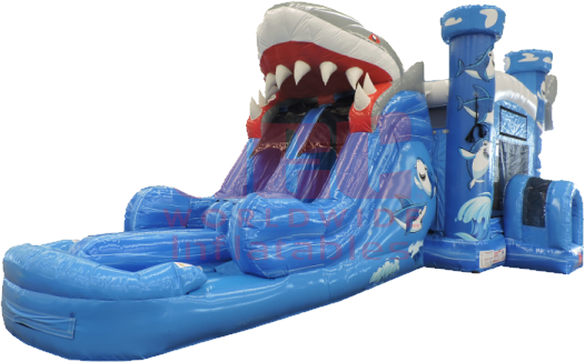 Shark Combo Dual Lane Slide