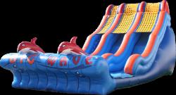 Big Wave Dual Lane Slide - $599