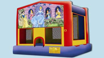Disney Princess Jumper - $210